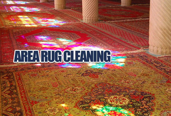 Knight Carpet Upholstery Cleaning